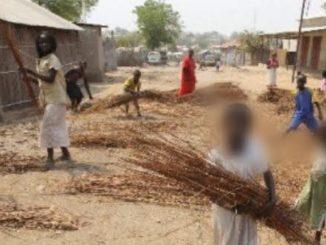 Niger incendio scuola