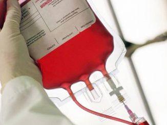 Una sacca di sangue