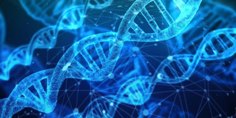 COVID-19 ricerca legame DNA
