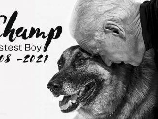 Champ e Biden in una card commemorativa