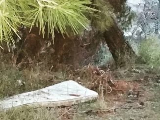 Un materasso abbandonato
