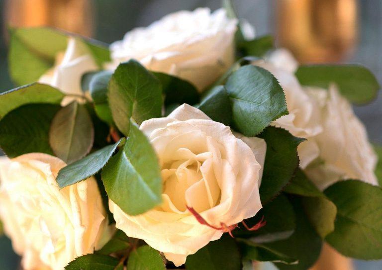 Matrimonio annullato a Padova