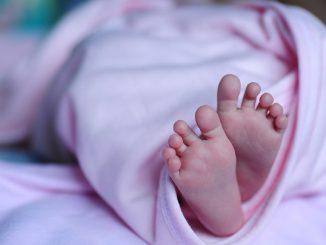 """Genova, neonata lasciata nella """"culla per la vita"""": sta bene"""