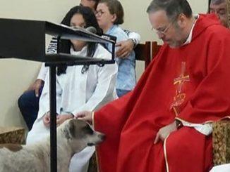 Padre Joao Paulo con uno dei suoi amici