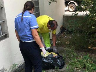 Il mucchio di rifiuti a Cassano ispezionato dalla Municipale