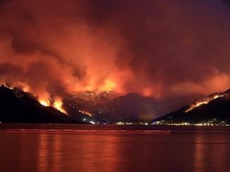 incendi turchia