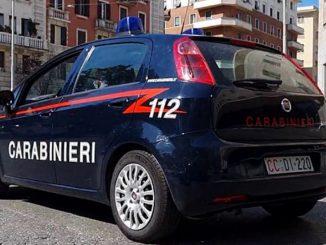 Padova anziano uccide cane