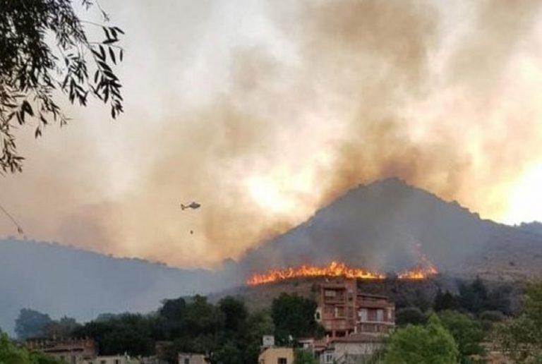 Uno scatto di oggi, 13, agosto, a Monte Catillo