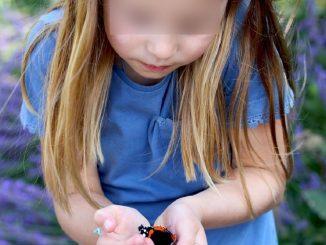 La principessa Charlotte con la farfalla