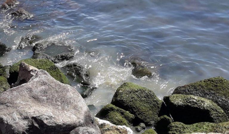 Ladispoli scarichi in mare
