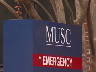 Il settore di pronto intervento del MUSC
