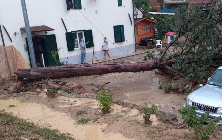 Uno scatto che ritrae danni causati dal maltempo a Villa Pitignano