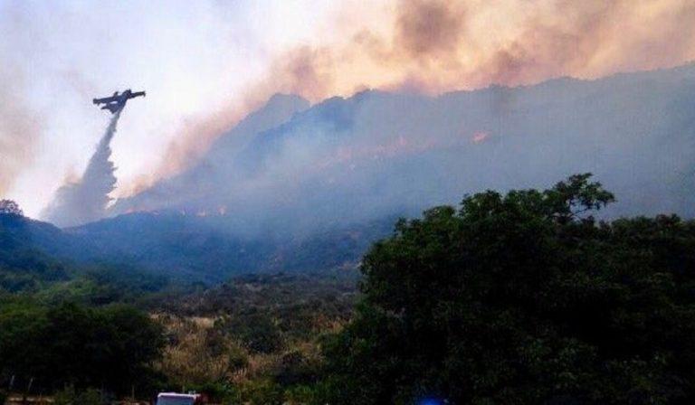 foto incendi sicilia nasa