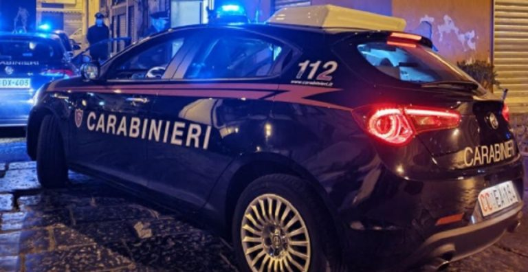 Incidente Salerno cane