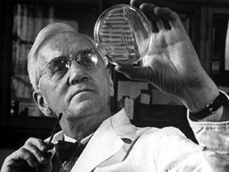 alexander fleming penicillina