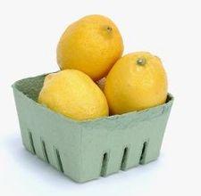 article page main ehow images a08 2t qq eat lemons salt 800x800