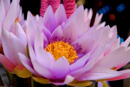 ricerca sui fiori